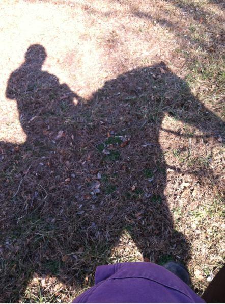sway shadow